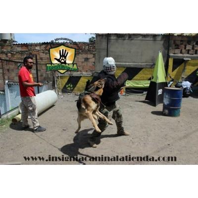 ACTIVIDAD EXTREMA ATTACK DOG